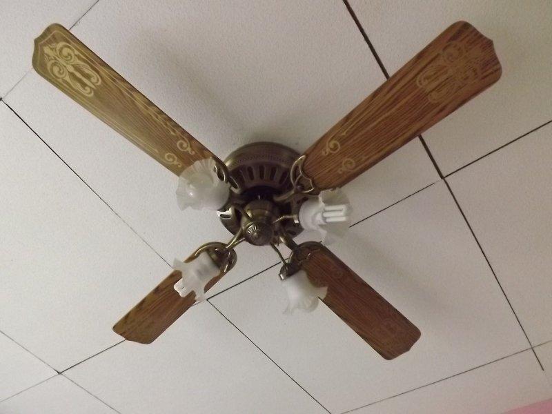 deckenventilator ventilator beleuchtung eiche deckenlampe. Black Bedroom Furniture Sets. Home Design Ideas